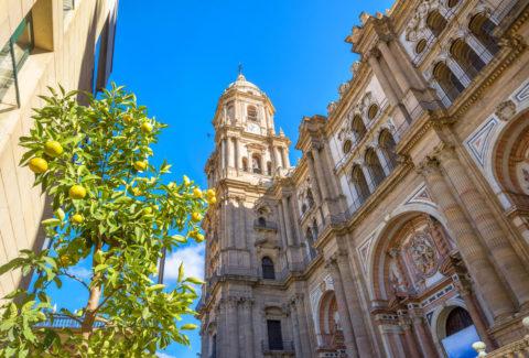 Tour guiado por Málaga: Centro Histórico